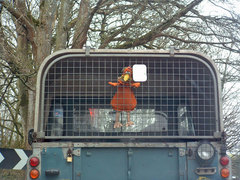 chicken puppet trying to escape from a vehicle